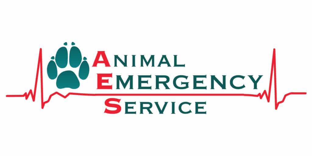 AES Accelerated Emergency Program Improve International Australia